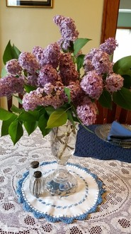 spring lilacs at bobbi's bungalow